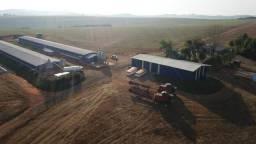 Fazenda em Tibagi/Paraná 350ha perto da cidade! Oportunidade única!