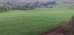 Vendo fazenda em Gruaraniaçu