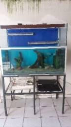 Aquario 400 litros completo