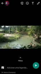 Vendo esse terreno com acesso ao igarapé