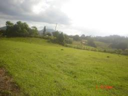 Fazenda 218.27 Mil Hectares com 50% de Pastagem- Miracatu-SP
