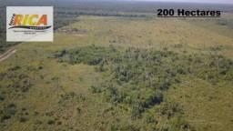 Fazenda com 200 Hectares à venda na Zona Rural de Humaita/AM-FA0173