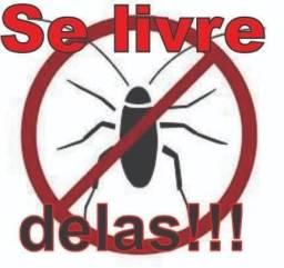 Dedetização contra baratinhas ou formigas em promoção !
