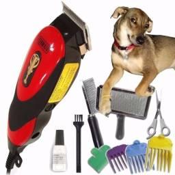Kit Maquina De Tosa Pets Cães E Gatos Qirui 110v