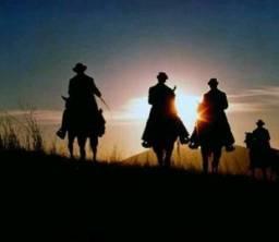 Desapegue do stress da cidade e venha andar a cavalo
