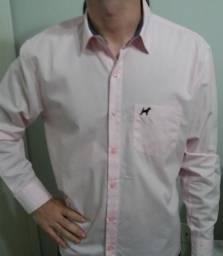 Camisas Beagle
