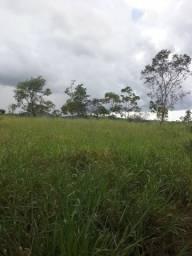 Fazenda de 43 alqueires na divisa com Rubiataba em Morro Agudo de Goias