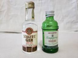 Gin Miniaturas ( Lote C/ 2 Miniaturas)