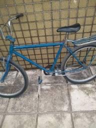 Bicicleta quadro labrador