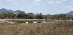 Fazenda com 220 tarefas na região de Tanquinho - Ba