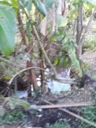 Chácara c agua corrente,26km de Gyn