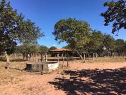 Fazenda 1.800 Hectares às Margens do Ribeirão de Areia Urucuia MG