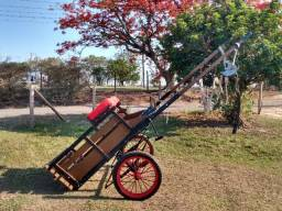 Carroça madeira com arreio novo