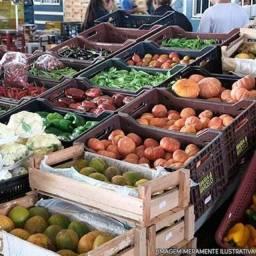 Frutas e verduras de qualidade para seu negócio!
