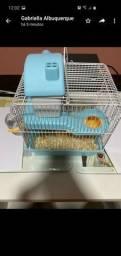 Gaiola Hamster Anão