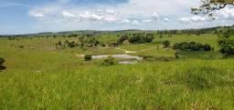Fazenda a venda no extremo sul da Bahia zap *