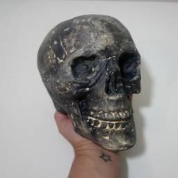 Cranio Tamanho Real promoção