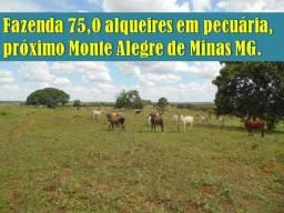 Fazenda 75,0 alqueires em pecuária, próximo Monte Alegre de Minas MG
