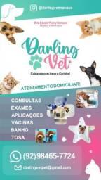 Pet shop a domicílio ( Veterinário a Domicílio )
