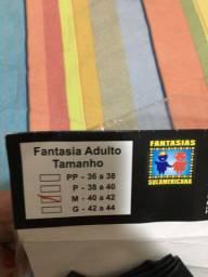 Fantasia freira