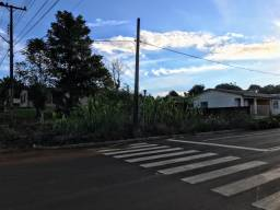 OPORTUNIDADE LOTE DE ESQUINA EM MARMELEIRO 353,00mt