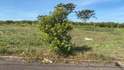 Terreno à venda - Loteamento Portal - Porto Rico