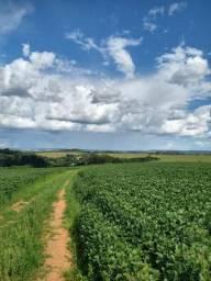 Fazenda com 126ha com 1.000metros de altitude, na região de Araxá!!