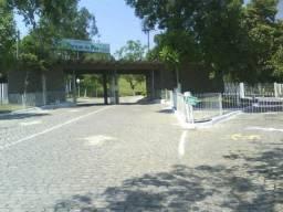Jázigo np Parque da Paz - Pacheco