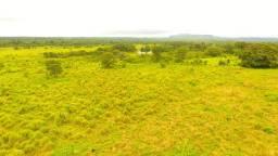 Fazenda 1.429 há (295 alq) área plana para exploração bovina