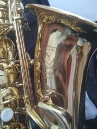 Saxofone Alto Eagle SA501 Laqueado com Chaves Niqueladas