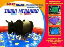 Touro Mecânico completo com colchão inflável