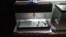 Troco aquario por sump