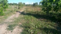 Fazenda 200 hectares bruta em São Valério