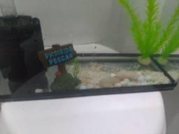 Vendo aquário 20 litros