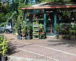 VENDO Quiosque de Flores e Plantas