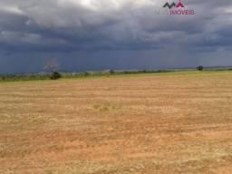 Fazenda 571 hectare - SOJA
