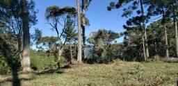 Sitio em Urubici/chácara em Urubici