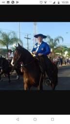Cavalo Manso de Fundamento!