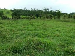 Fazenda com 14 alqueires em São Domingos do norte