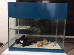 Aquario com rampa