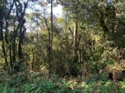 Terreno à venda, 922 m² por R$ 320.000 - Vila Suzana - Canela/RS