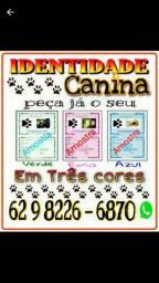 Identidade canina