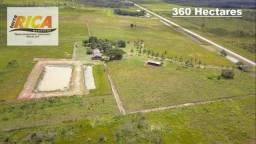 Fazenda com 360 Hectares à venda em Humaita/AM-Cód FA0160