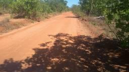 Fazenda 2275 hectares bruta na região de Santa roza do Tocantins