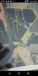 Vendo Fazenda 51 hectares, 10 Km de São Gotardo, MG,R$5.500.000,00