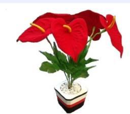 Planta Artificial (Antúrio)