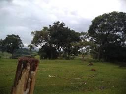 Terreno comercial de 180 mil m2 na rodovia Fernão Dias