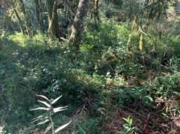 Terreno à venda, 616 m² por R$ 430.000 - Quinta da Serra - Gramado/RS