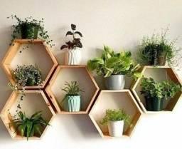Título do anúncio: nicho hexagonal