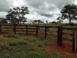 Sítio região Serra Negra Piracanjuba